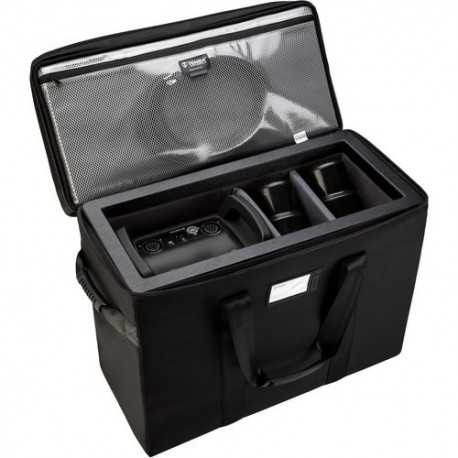 Air Case for Profoto Pro-10 w/ 2 heads
